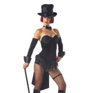 Other - Sexy Ringmaster/Ringleader Costume